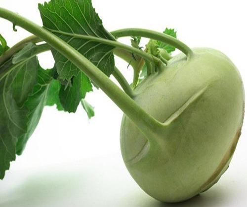 hạt giống rau xu hào