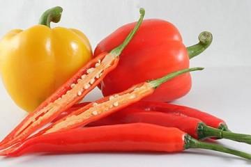 hạt giống rau được trồng nhiều vào mùa hè