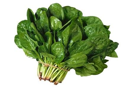 hạt giống rau bina