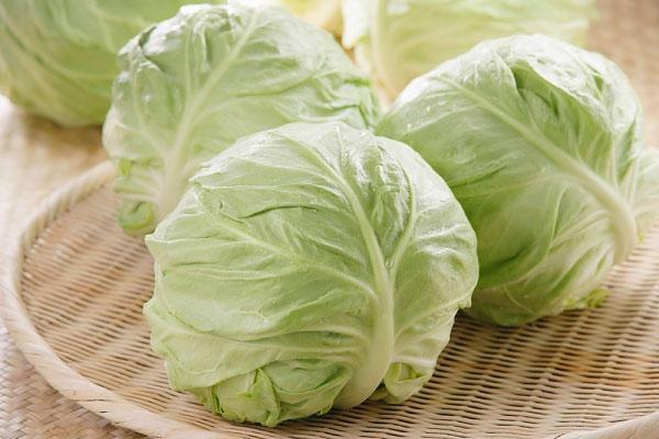 Các loại hạt giống rau bắp cải