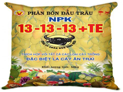 883-dau-trau-13-13-13te