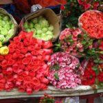 Hướng dẫn giúp hoa nở lâu tàn